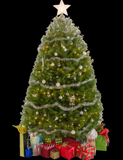 Christmas Tree - Click to view Wish List